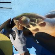 Maler Gehm in Wedel & Hamburg - Aussenarbeiten - Graffiti - Meeresschildkröte