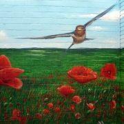 maler-in-wedel-und-hamburg-aussenarbeiten-graffiti-mohnblumenfeld-3